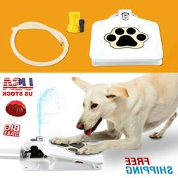 Outdoor Trouble-Free Dog Pet Drinking Doggie Activated Water